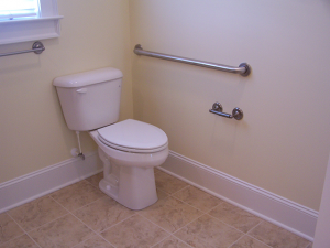 Comfort Height Toilet and Grab Bar